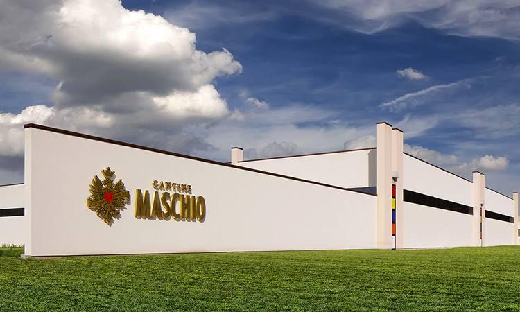 maschio winery